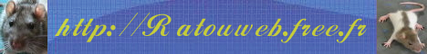 Bienvenue sur Ratouweb :)